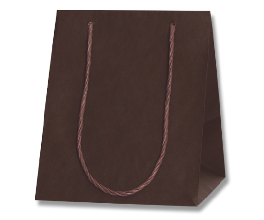 HEIKO 紙袋 カラーアレンジバッグ 3S 焦茶 10枚 006441051