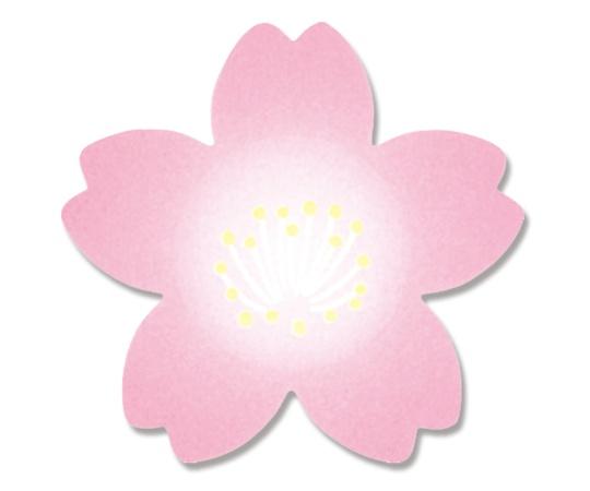 HEIKO ギフトシール(ロールシール) 紅桜 500片 007067523