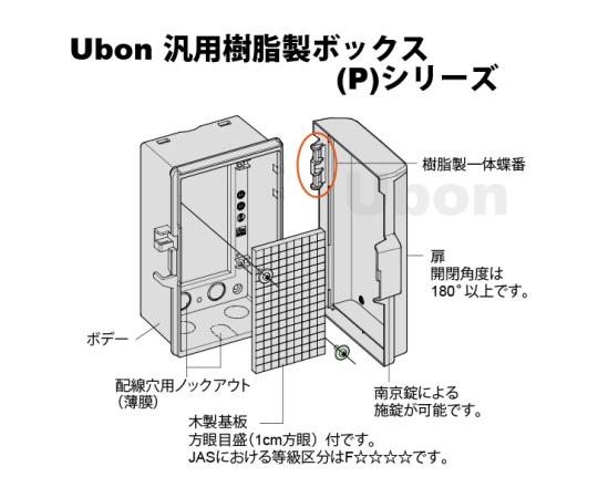 汎用樹脂製ボックス(外形W100×D200×H100) P10-12A-U