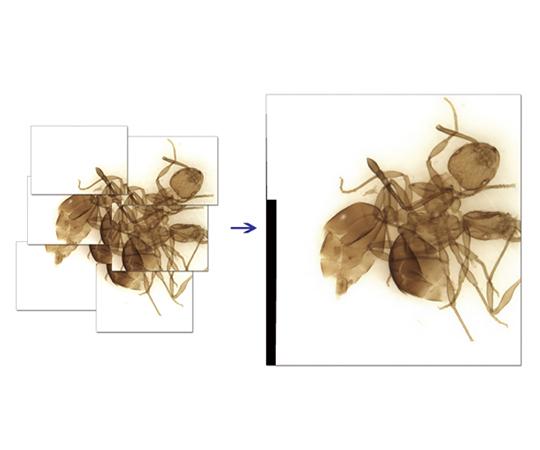 顕微鏡用高機能計測ソフトウェアUSBキー版