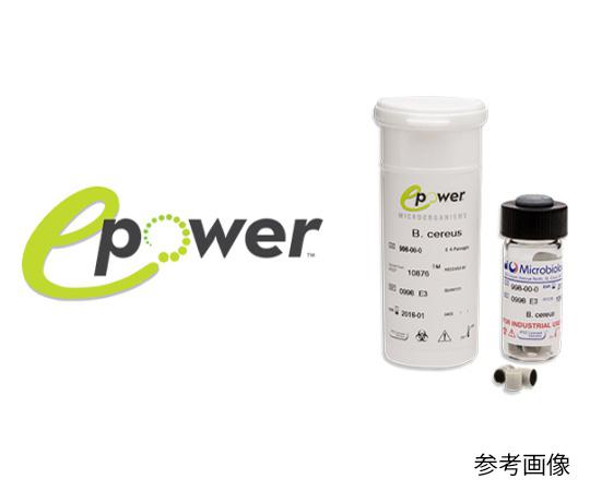 Epower(TM)