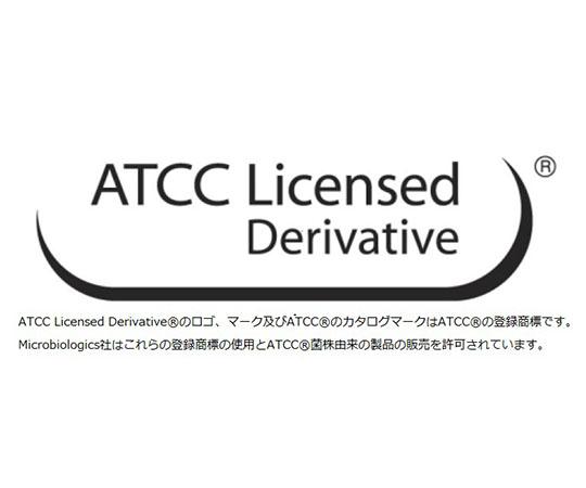 標準菌株(KWIK-STIK 6pack) Kocuria rhizophila derived from ATCC 9341a 0669K