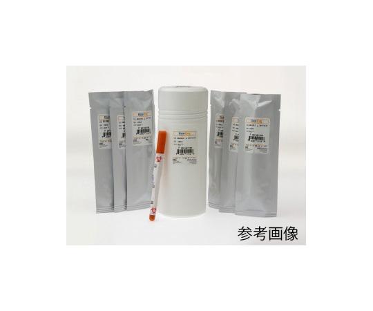 標準菌株(KWIK-STIK 6pack) Lactobacillus rhamnosus derived from ATCC 53103 01090K