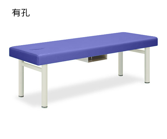 有孔フォルダ 幅50×長さ170×高さ55cm ライトブルー TB-418U