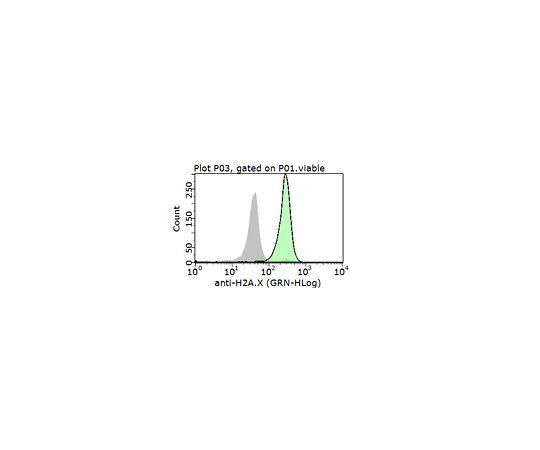 Anti-Histone H2A.X, Human; 100 μL AB10022