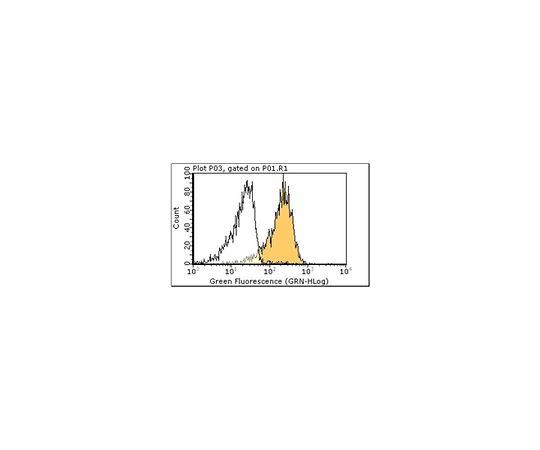 [取扱停止]Anti-TLR6, clone 11C5.1; 100 μg MABF70