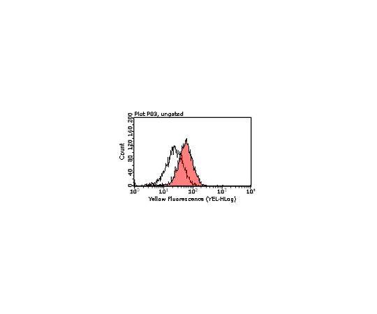 Anti-Tim3, clone 5D12; 100 μL MABF73