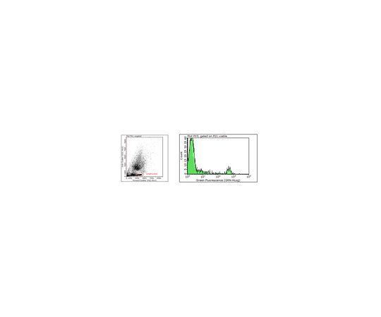 [取扱停止]Anti-CD20, clone 2H7 MABF250
