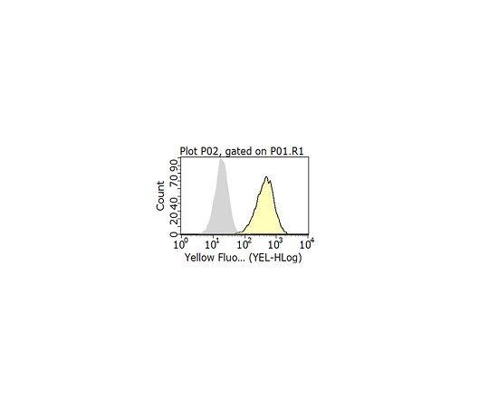Anti-CD46 Antibody, clone 8A9.1 MABF293