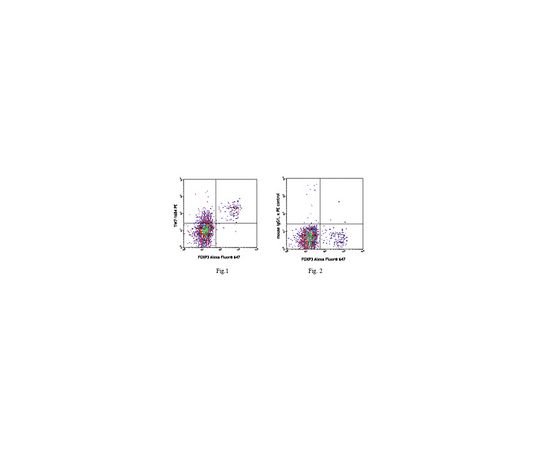 [取扱停止]Anti-LAP (TGF-β1) (mouse), PE, clone TW7-16B4 MABF346