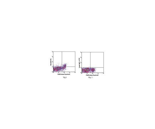 [取扱停止]Anti-LAP (TGF-β1) (human), FITC, clone TW4-2F8 MABF347
