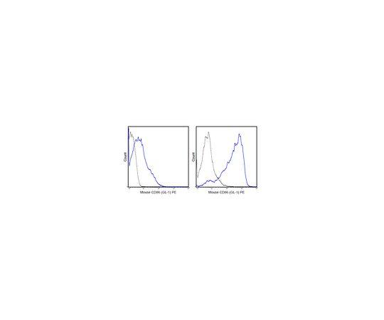 Anti-CD86 (B7-2) (mouse), PE, clone GL-1 MABF458