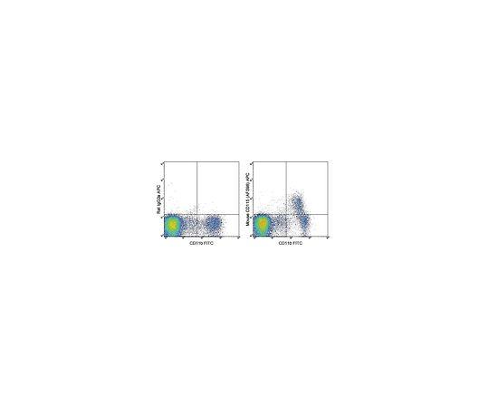 Anti-CD115 (c-fms) (mouse), APC, clone AFS98 MABF507