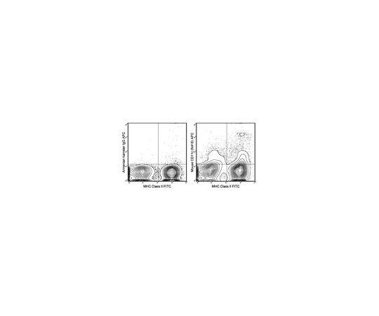 Anti-CD11c (mouse), APC, clone N418 MABF526