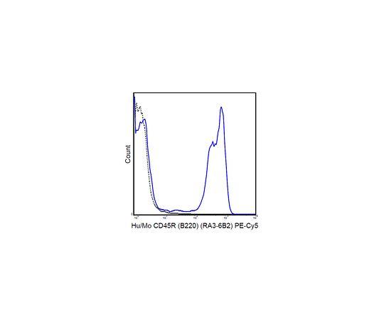 Anti-Amyloid βA4, clone 1E8 (Amino Terminus) MABF603