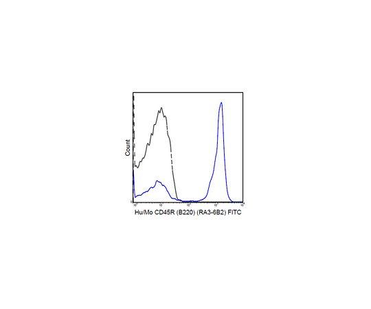 Anti-CD45R (B220) (human/mouse), FITC, clone RA3-6B2 MABF608