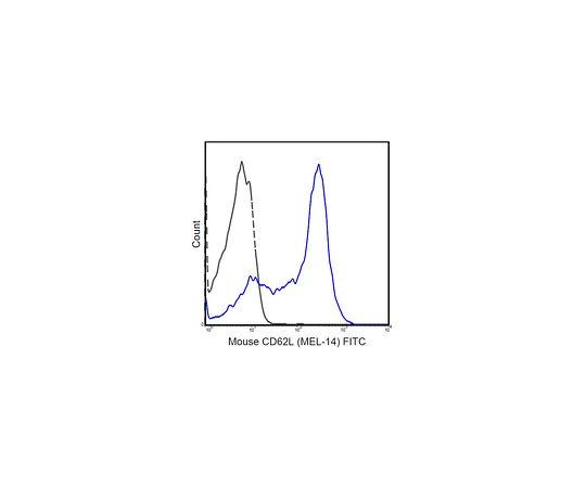 Anti-CD62L (L-Selectin) (mouse), FITC, clone MEL-14 MABF719
