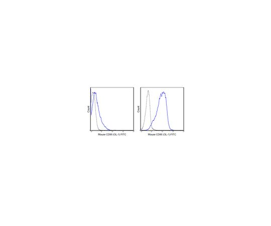 Anti-CD86 (B7-2) (mouse), FITC, clone GL-1 MABF725