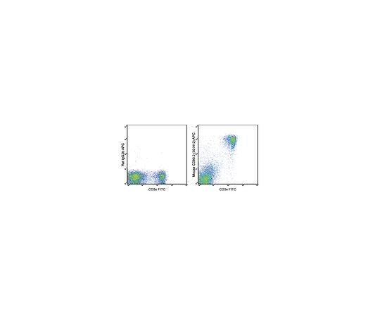 Anti-CD90.2 (mouse), APC, clone 30-H12 MABF729