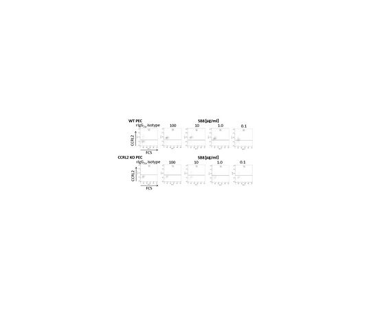 Anti-CCRL2 (Mouse) Antibody, clone BZ5B8 MABF921