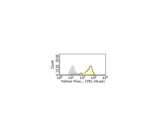 Anti-FcγRII (human) Antibody, clone AT10 MABF925
