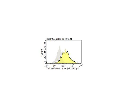 Anti-CD99 Antibody, clone 0662 MABF927