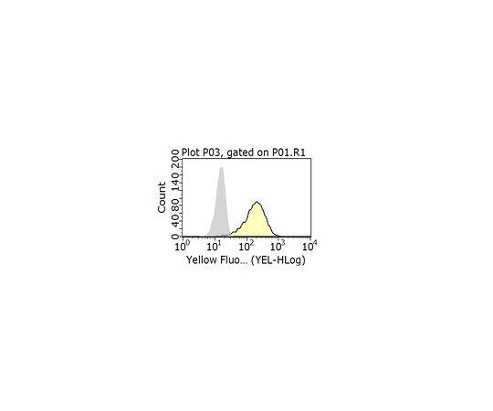 Anti-CXCR4 Antibody, clone 12G5 MABF981