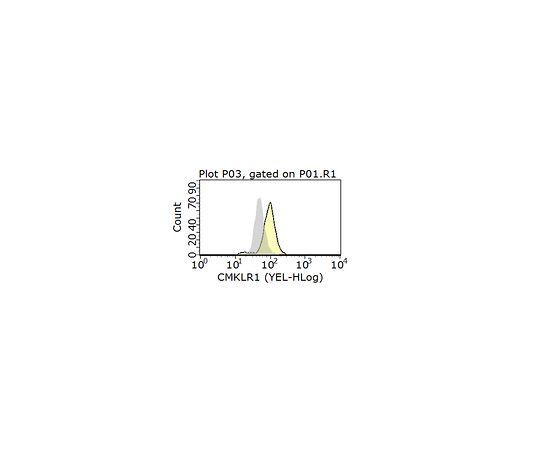 Anti-CMKLR1 Antibody, clone BZ194 MABF1011
