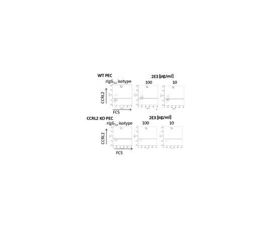 Anti-CCRL2 (Mouse) Antibody, clone BZ2E3 MABF1033
