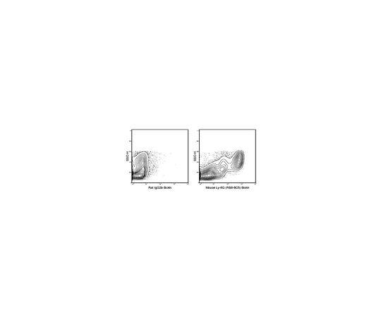 Anti-Ly-6G (mouse), clone RB6-8C5, biotin conjugate Antibody MABF1480