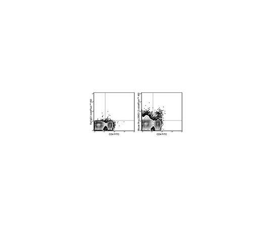 Anti-mouse IFN gamma, violetFluor(TM) 450, clone XMG1.2 Antibody MABF1521