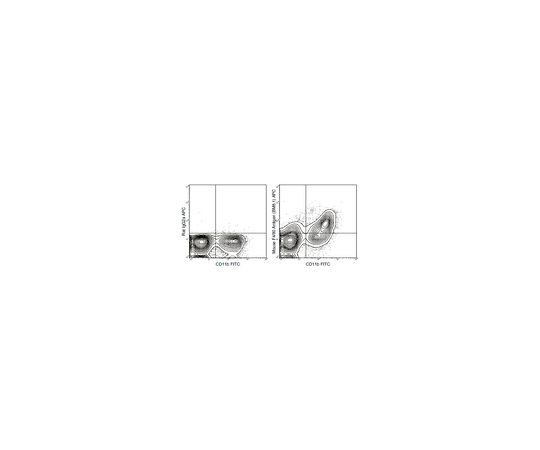 Anti-F4/80 (mouse), APC, clone BM8.1 Antibody MABF1523