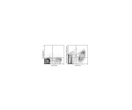 Anti-F4/80 (mouse), clone BM8.1, biotin conjugate Antibody MABF1526