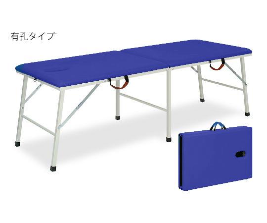 有孔トライ 幅40×長さ180×高さ55cm ライトブルー TB-252U