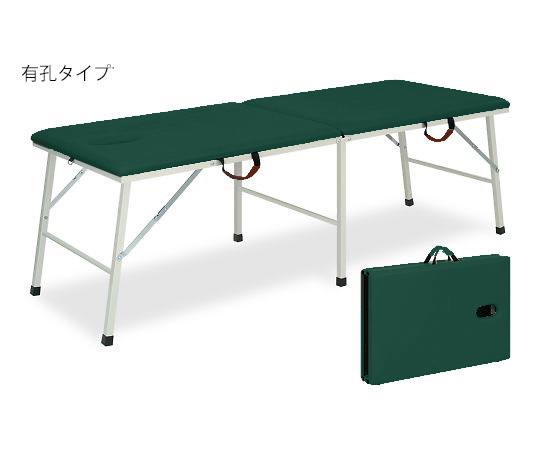 有孔トライ 幅40×長さ180×高さ55cm メディグリーン TB-252U