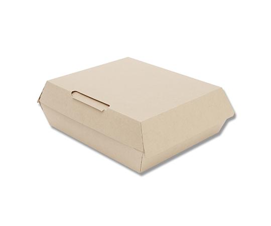 食品容器 ネオクラフトボックス ランチボックス L 10枚  004248010