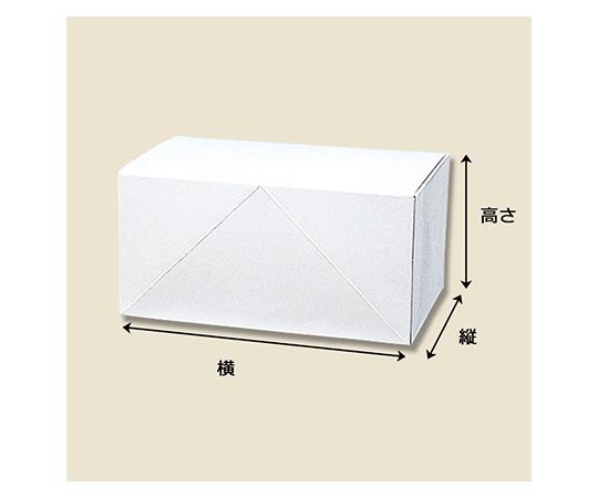 箱 白地カートン 4 10枚  004246804