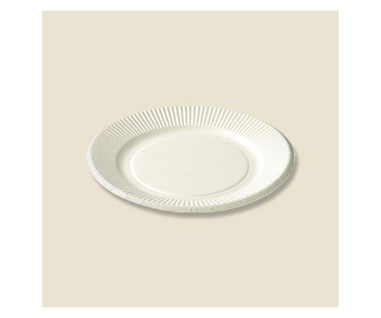 [取扱停止]紙皿 スタンダードプレート(ペーパーウェア) 100枚入  004283125