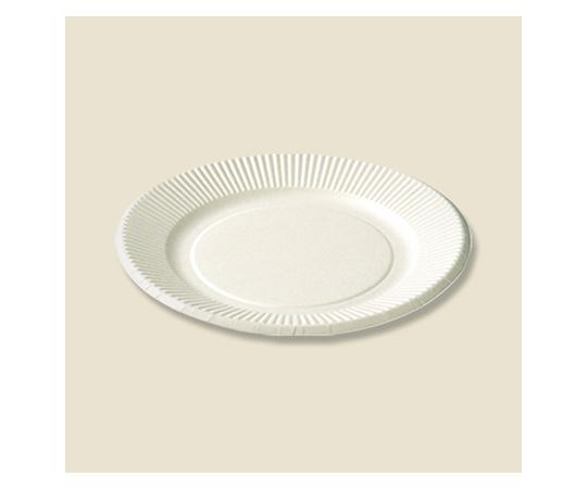 [取扱停止]紙皿 スタンダードプレート(ペーパーウェア) 100枚入  004283126