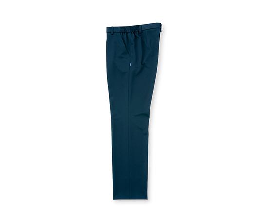 パンツ(メンズ) 10 L  UF7995P