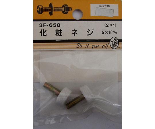 化粧ネジ 5×16mm 2個入  3F658
