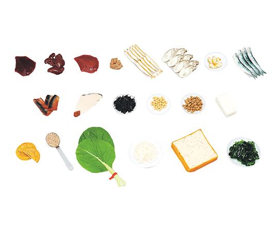 フードモデル(糖尿病指導/減塩食指導/野菜組み合わせ/食品20品目シリーズ)