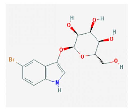 5-Bromo-3-indoxyl-beta-D-galactopyranoside, 250 mg RC-503