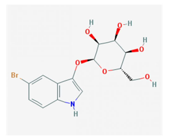 5-Bromo-3-indoxyl-beta-D-galactopyranoside, 500 mg RC-504