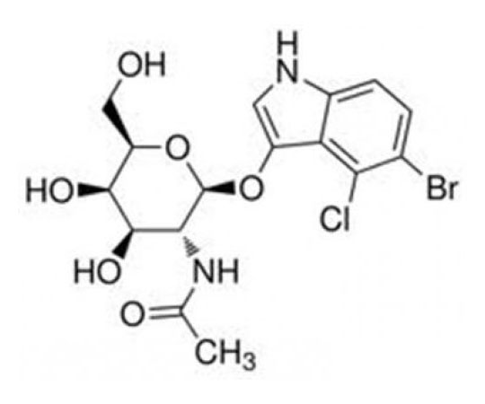 5-Bromo-4-chloro-3-indoxyl-N-acetyl-beta-D-galactosaminide, 0.5 G RC-600