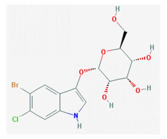 5-Bromo-6-chloro-3-indoxyl-beta-D-galactopyranoside, 5 G RC-629