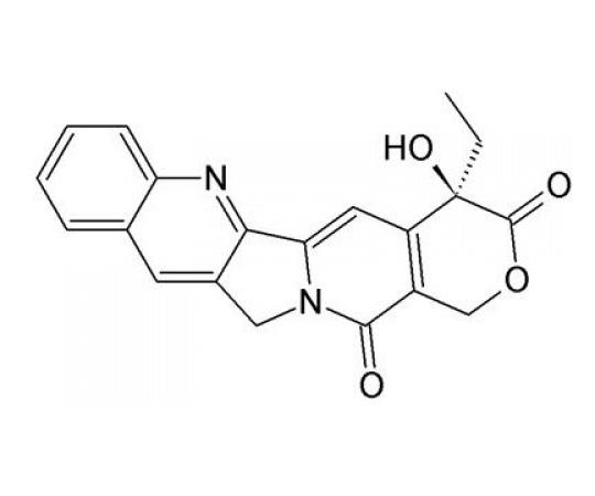 HOOK™-Biotin-PEG2-Amine Kit, 1mL API-02