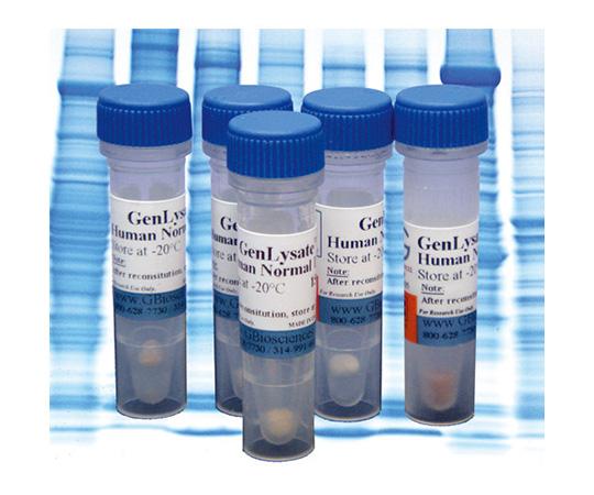 Chicken Normal Lung GenLysate, 150µg NLC-03