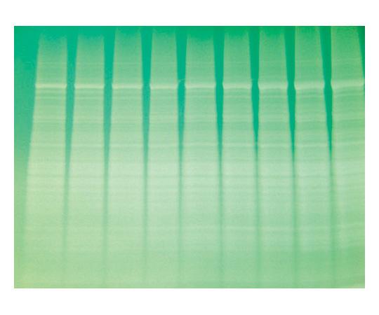 Destaining Solution for Reversible Copper Stain [10X], 500mL 786-32DSCU