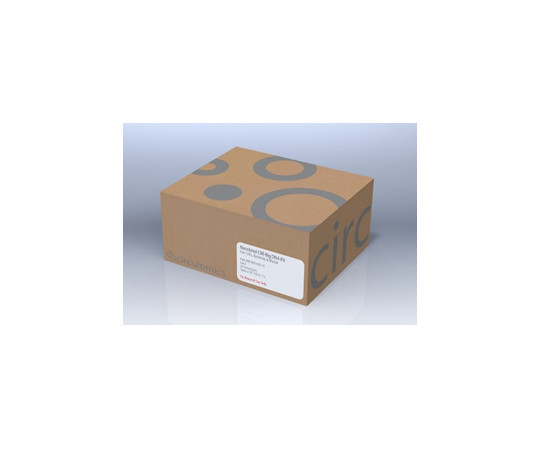 Nanobind CBB Big DNA Kit (Cells, Bacteria, Blood) - Beta Version  NB-900-001-01